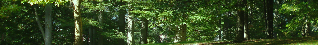 Flowery Hill